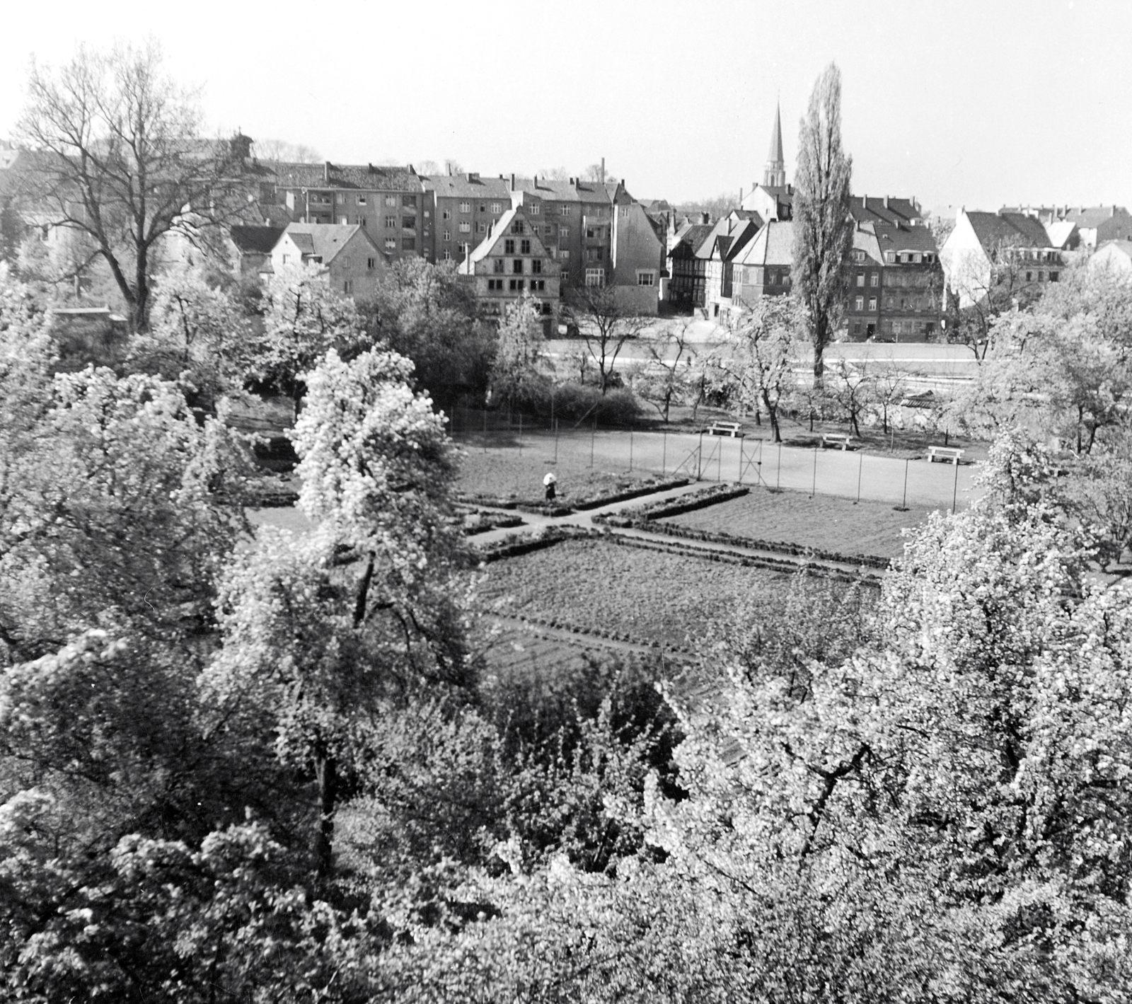 1930 Garten_1600
