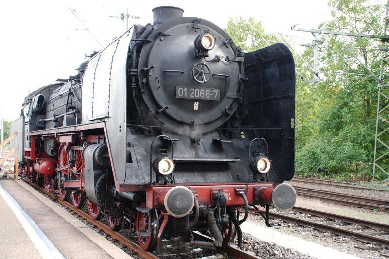 2011GÖP03_800