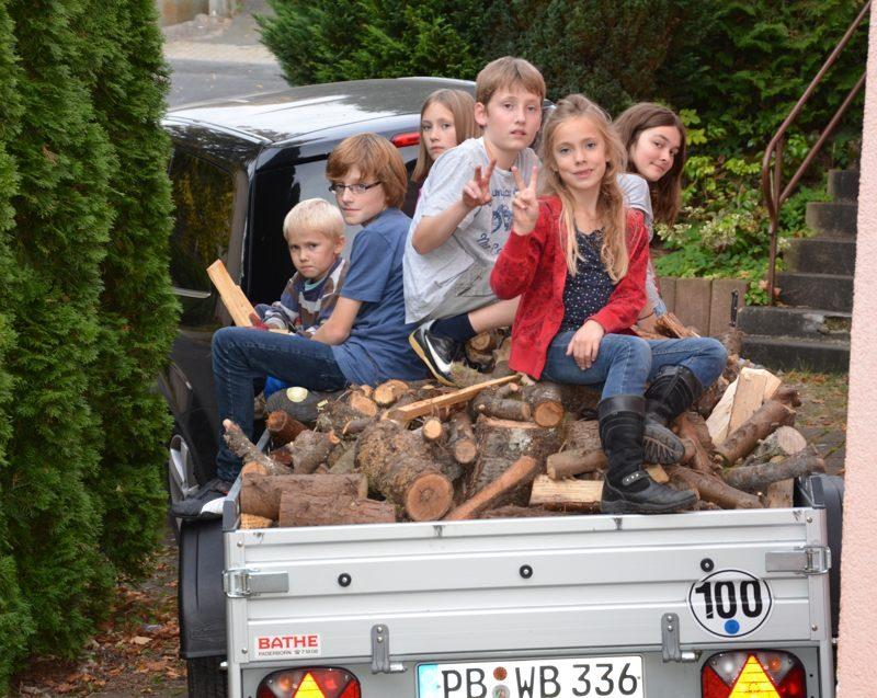 201210 Holzkommt1