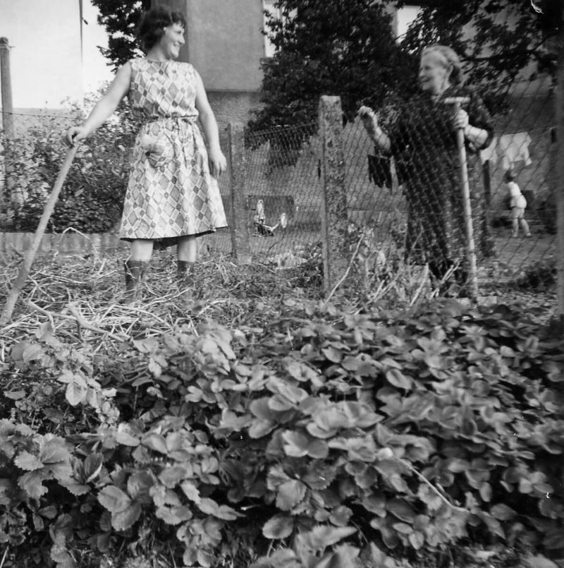 BS 1966 Mama und Oma Kleinschnittger im Garten800